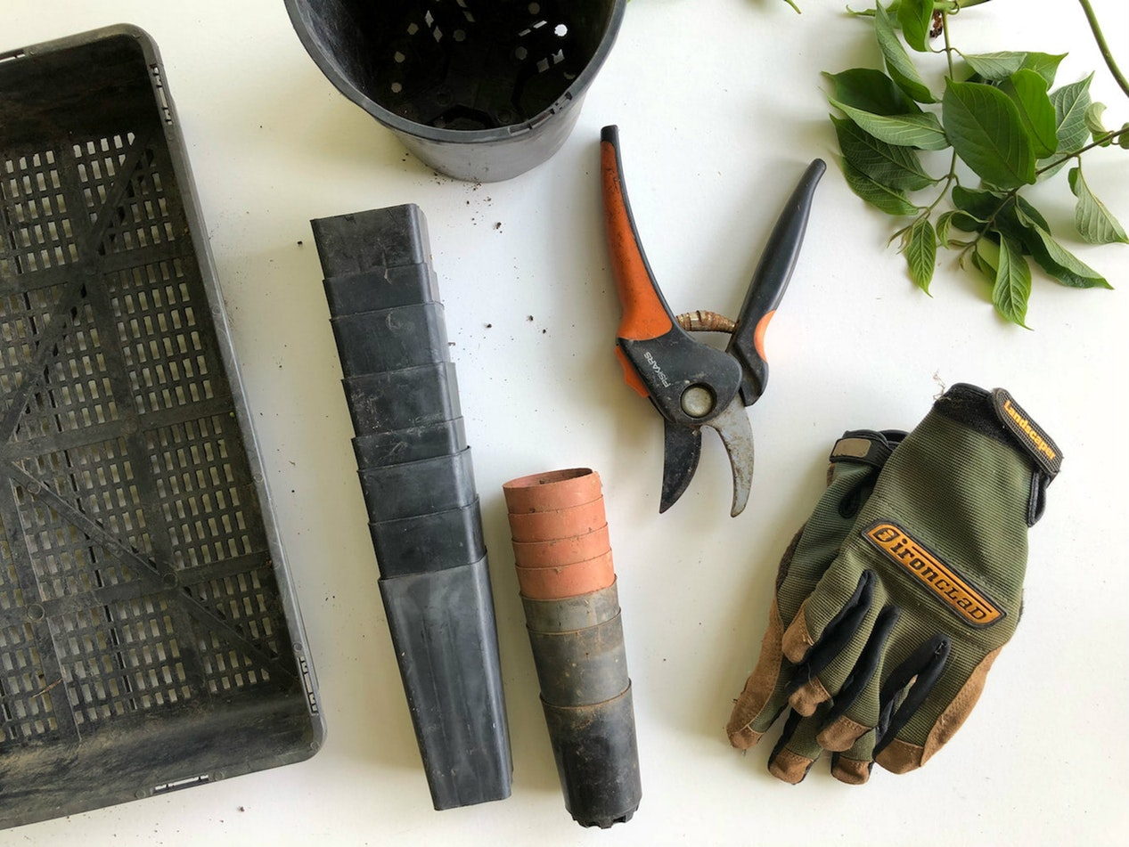 6 Gardening Tools Every Gardener Needs In Their Arsenal