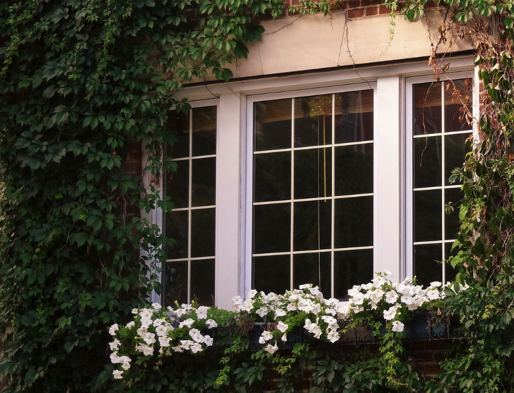5 ways to stop your sash windows from rattling