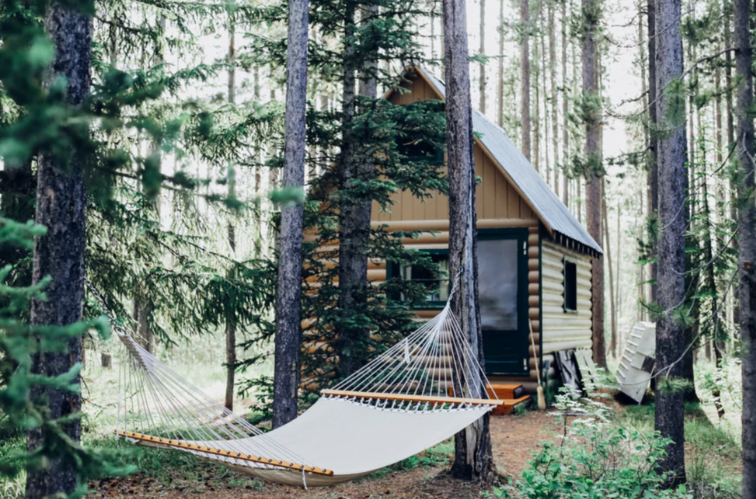 How can I build my own tiny house?