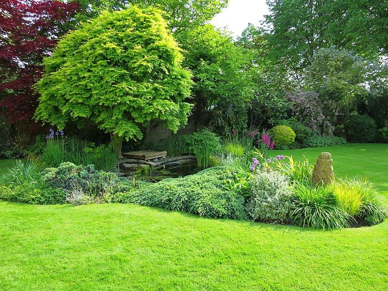 Simple Ways to Renovate Your Garden