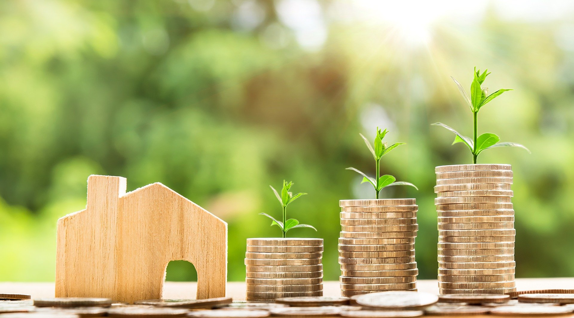 Zuneth Sattar Examines News of House Price Growth Jump to 11.4% in October 2020