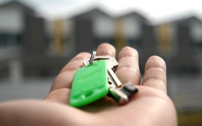 Discover The Role Of Letting Agents And How They Can Help You!