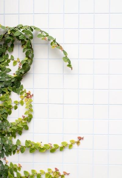 Can You Put Bathroom Wall Panels Over Tiles?